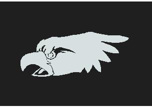 EAGLE+HEAD+03.jpg