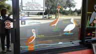 Water Birds 5.jpg
