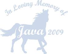 MEMORY HORSE B