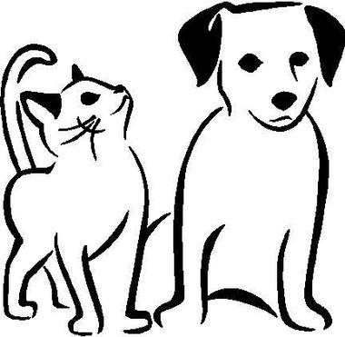 CAT+and+DOG.jpg