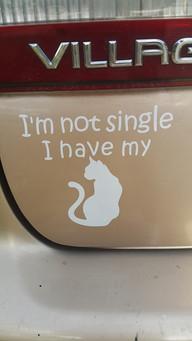 I'm Not Single - I Have My.jpg