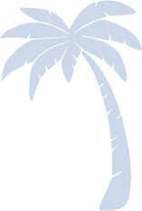 PALM+TREE.jpg