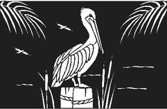 Pelican and Palms