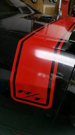 Vehicle Graphics.jpg