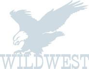 WILD WEST.jpg