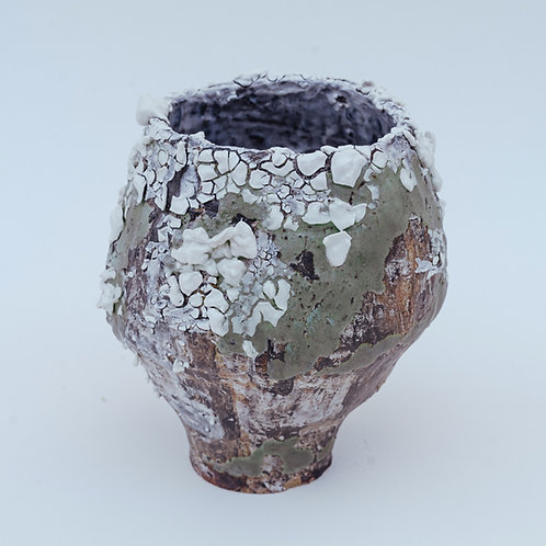 Lichen Earth Vessel Vase III
