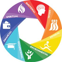 wellness wheel.png