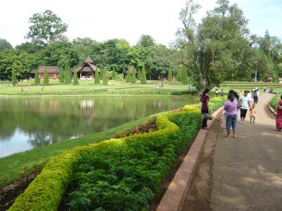 The beautiful National Kandawgyi Gardens