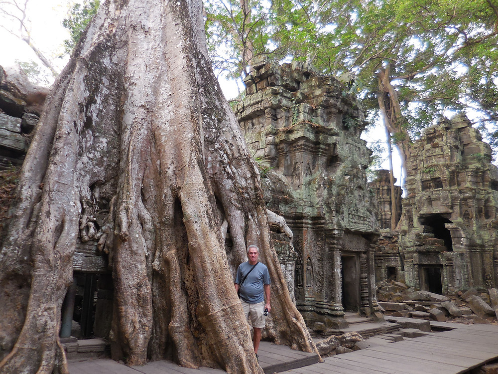 John standing next to one of the temple ruins that's fully engulfed by one of the sponge trees