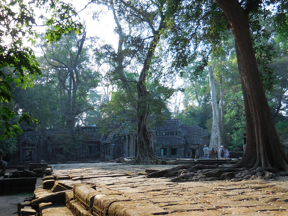 Approaching the entrance to Ta Prohm in the late afternoon