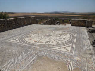 The ancient Roman city at Volubilis