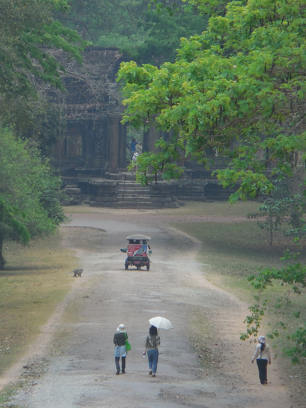 Looking east from the back of Angkor Wat. Photo taken mid-day.