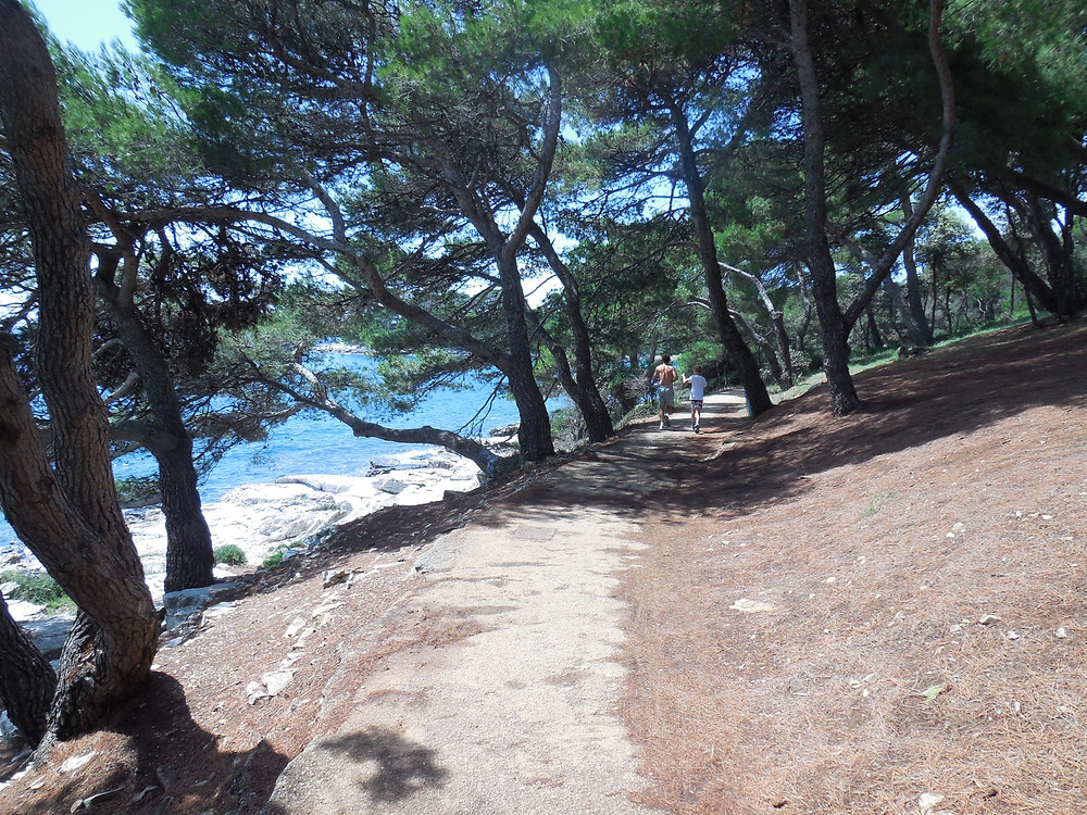 One of the many trails in the Rovinj area for hiking or biking