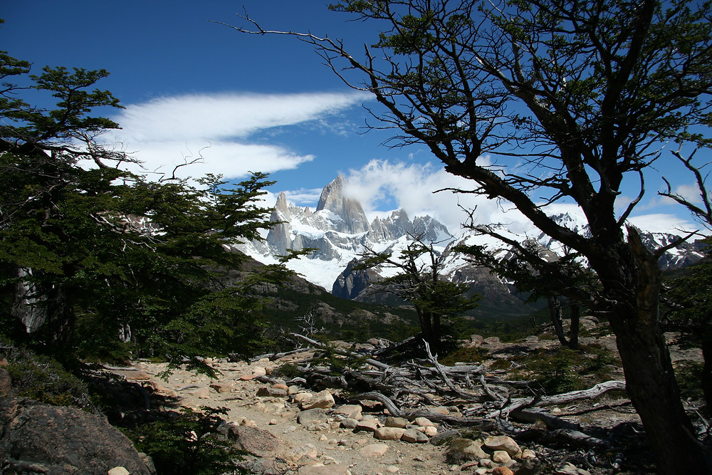 The Fitz Roy range is in view much of the trail to Laguna de los Tres