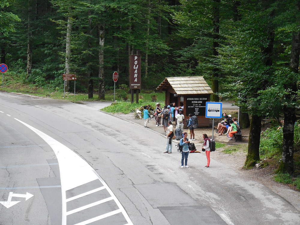 The bus stop at entrance 2 is used to drop off and pick up - purchase your bus ticket at the wood kiosk