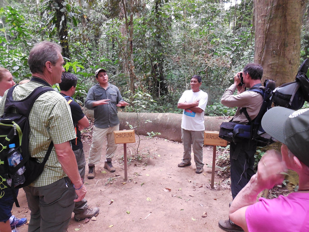 The shaman is describing the various plants and trees used for medicinal purposes in the jungle