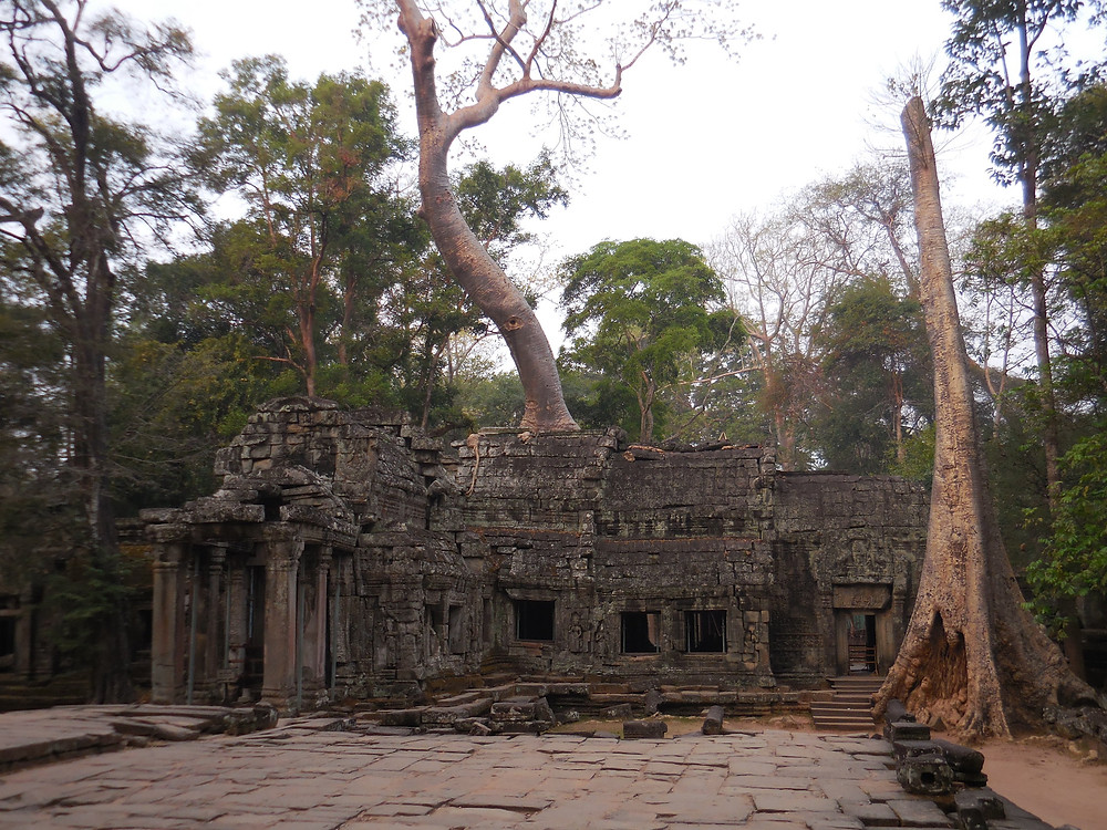 Approaching the crumbling entrance of Ta Prohm - aka the jungle temple