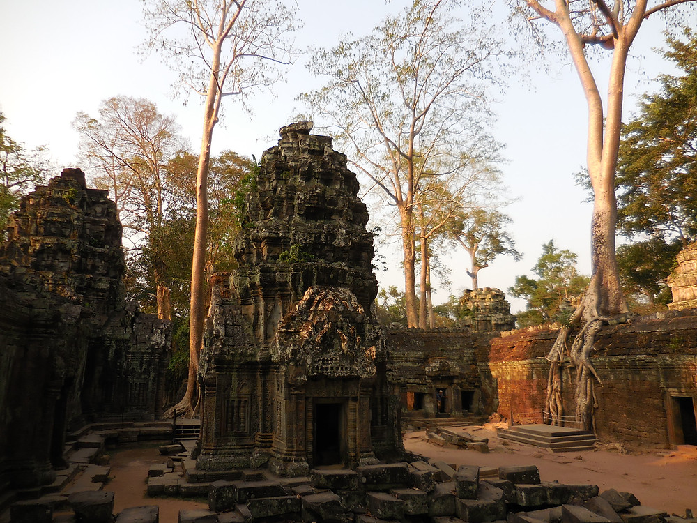 Whether it's early morning or late afternoon (as shown here), this section of Ta Prohm is a great photo op