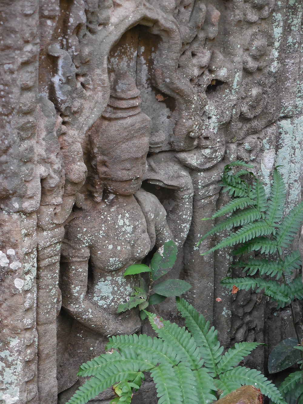This Apsara figure is partially hidden behind some plants at Preah Khan