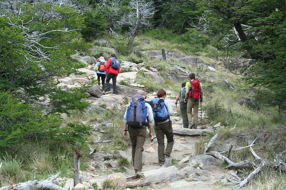 Hikers climbing the switchbacks on the trail to Laguna Torre