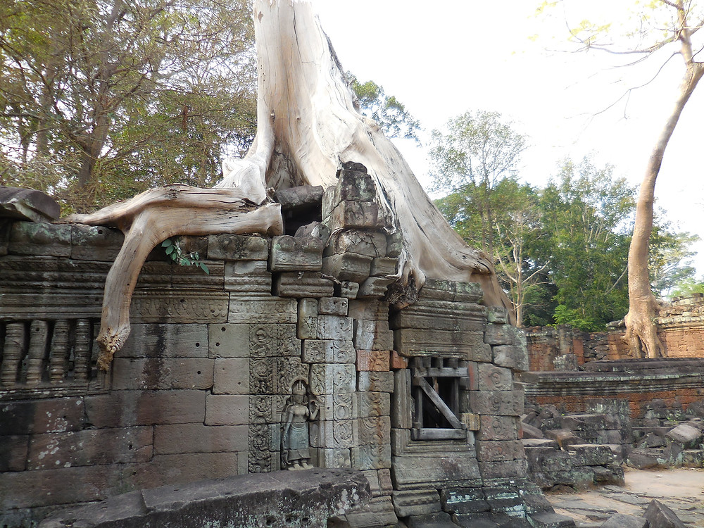 Tree, temple ruin, Apsara figure, window requiring wooden support - this must be Preah Khan