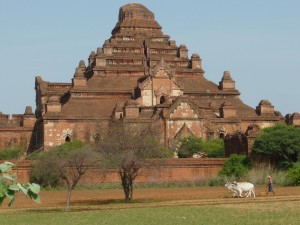 A farmer plowing his field near a large temple