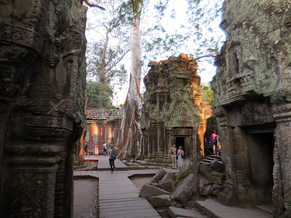 The late afternoon is an ideal time to walk through Ta Prohm when the crowds dwindle and the sunlight filters through the trees