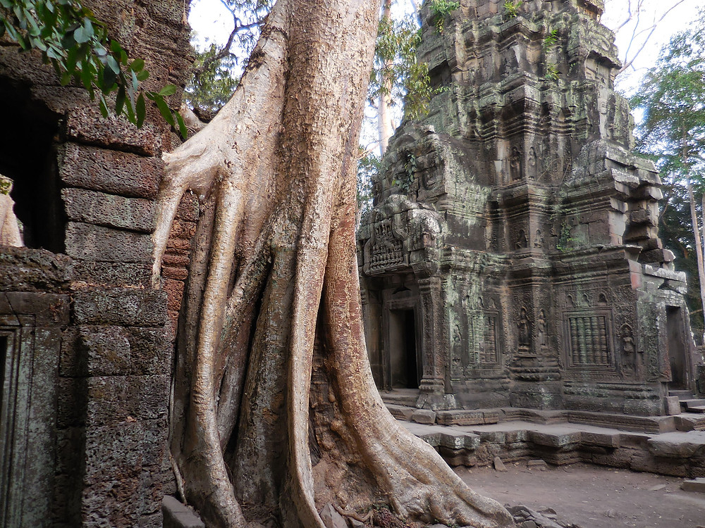 Another great photo op at Ta Prohm