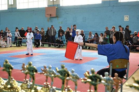 Открытый турнир по Синкиокусинкай каратэ Республики Калмыкия
