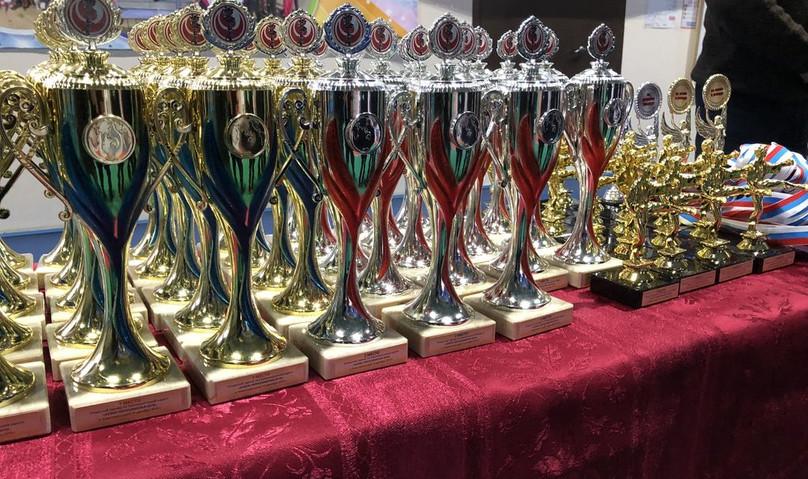 Открытый турнир по Синкиокусинкай каратэ «Кубок Черноземелья 2019»