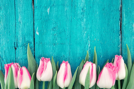 Frame of tulips on turquoise rustic wood