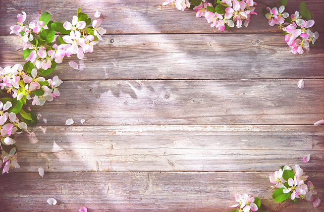 Spring blooming branches on wooden backg