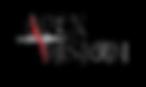 Wix Apex vision logo.png