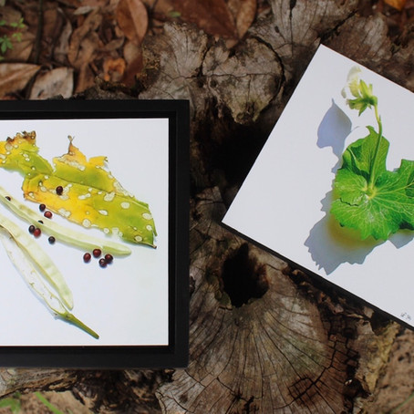 Online Art Fundraiser: Add Color to Your Life While Supporting Our Horticulture Program