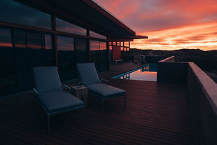 sunset palm inspiration.jpg