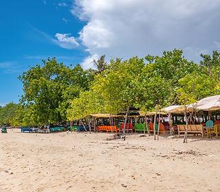 Beach Wood outdoors inspiration.jpg