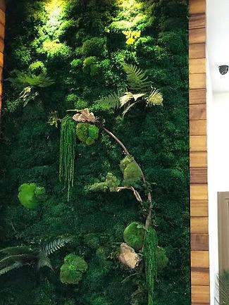 Yosun Bitki Duvar