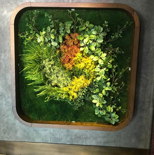 Yosun Duvar ve Yapay Bitki Uygulama