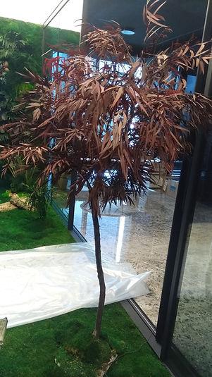 mumyalanmış ağaç-bitki aranjman