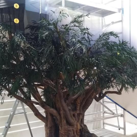 Stabilize Ağaç.jpg