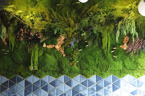 Yüksek Yoğunluklu Mumyalanmış Bitki Yosun Duvar