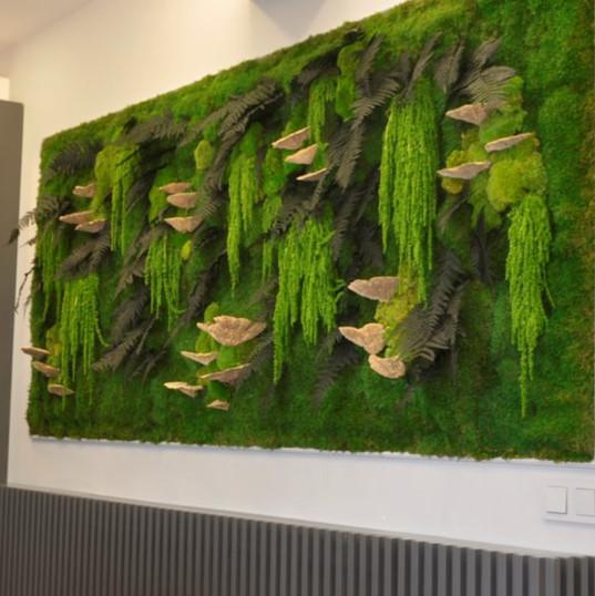 Stabilize-bitki-yosun-duvar.jpg
