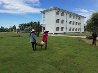 Charity Works Cooperation - Grassing completed at Training College in Vietnam June 2018