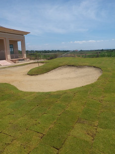 Charity Works - Bunker Pictured here and Grassing completed at Training College in Vietnam June 2018