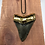 "Thumbnail: 3.02"" 18K Gold Plated Fossil Megalodon Shark Tooth"