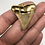 """Thumbnail: 1.62"""" 18K Gold Plated Fossil Chubutensis Shark Tooth"""