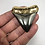 """Thumbnail: 2.52"""" 18K Gold Plated Diamond Polished Fossil Megalodon Shark Tooth"""
