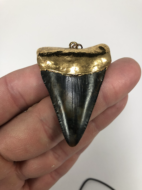 """2.13"""" 18K Gold Plated Fossil Great White Shark Toth"""