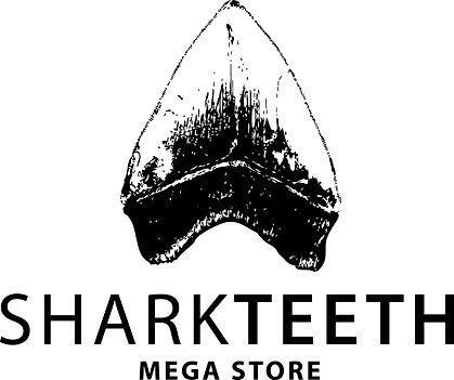 Fossil Megalodon Shark Tooth Logo