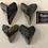 Thumbnail: Fossil Megalodon Shark Tooth Refrigerator Magnet Ocean Teeth